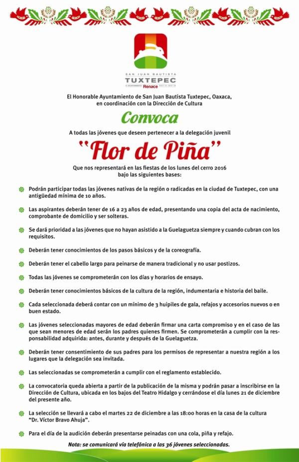 Ayuntamiento difunde convocatoria para integrar Delegación Flor de Piña 2016