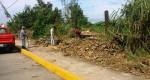 VIDEO: Instituto de Ecología ignora tala de árboles