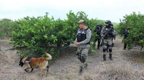 Localiza PGR 12 fosas clandestinas en Veracruz