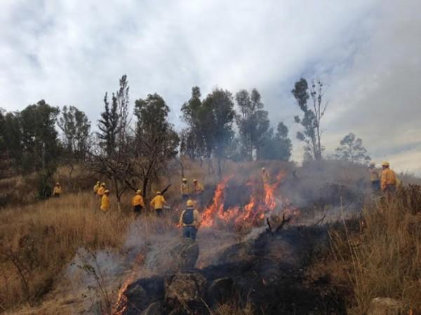 Establece Gobierno de Oaxaca líneas negras para la prevención de incendios forestales en el Cerro del Fortín