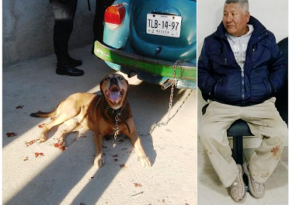 Arrastraba con su auto a un perro ya sangrante de las extremidades