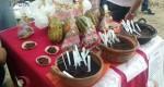"""Realiza COBAO 07 de Tuxtepec, """"Feria de Emprendedores"""""""