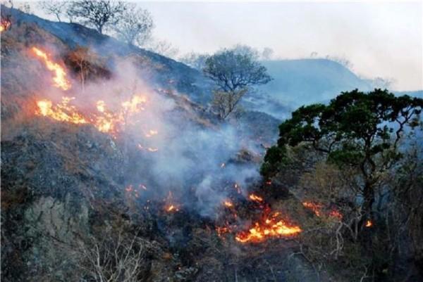 Sequía e incendios se agravarán en mayo en Oaxaca