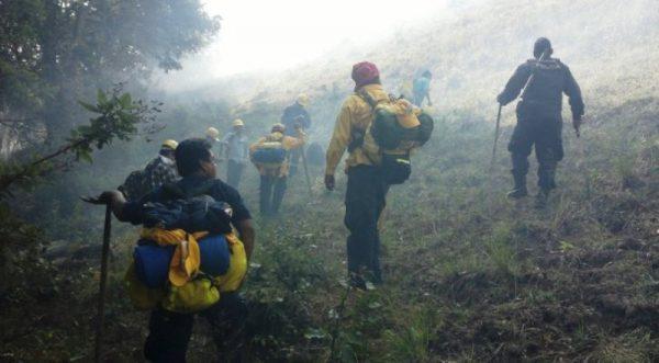 Incendio en Miahuatlán consume cerro y va por más