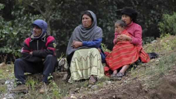 Al estado no le interesan los indígenas: Comisión de Derechos Humanos