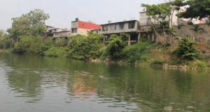 """Urge una fuerte campaña ambiental para que no muera el río """"Papaloapan"""""""
