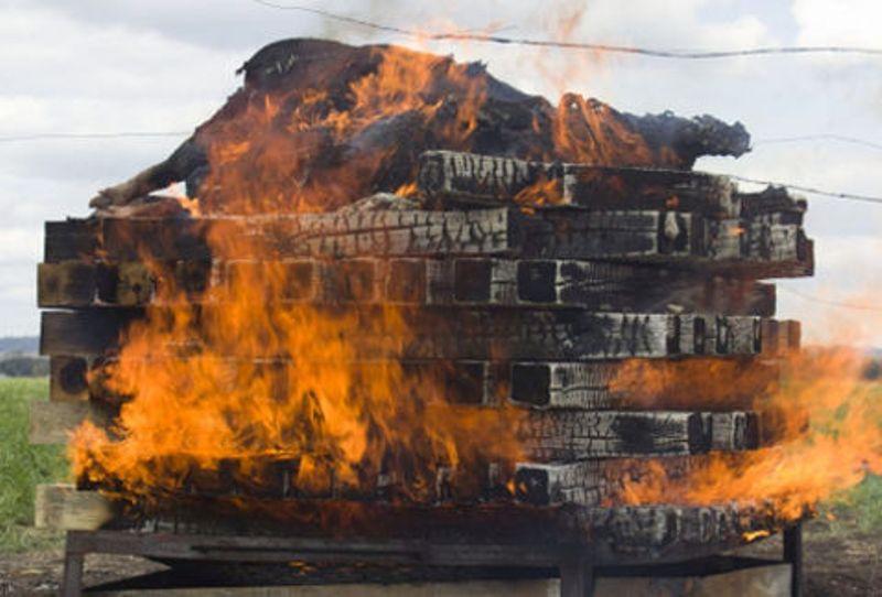 Experimento descarta que los 43 normalistas fueran quemados