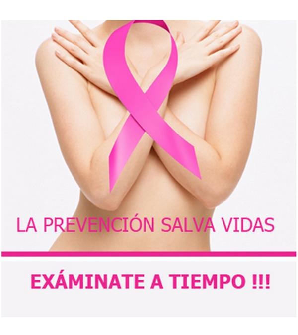 Pecho hinchado: Cules son las causas de los senos