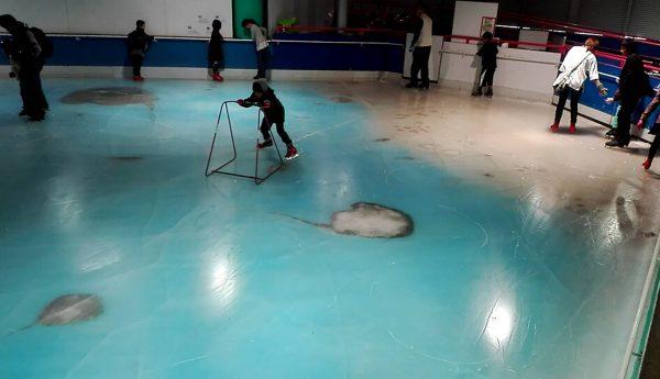 Cierran pista de patinaje en Japón que atrapó 5.000 peces en el hielo