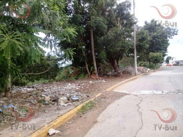 """Colonos pidieron permiso al ayuntamiento para """"invadir"""" el muro boulevard"""