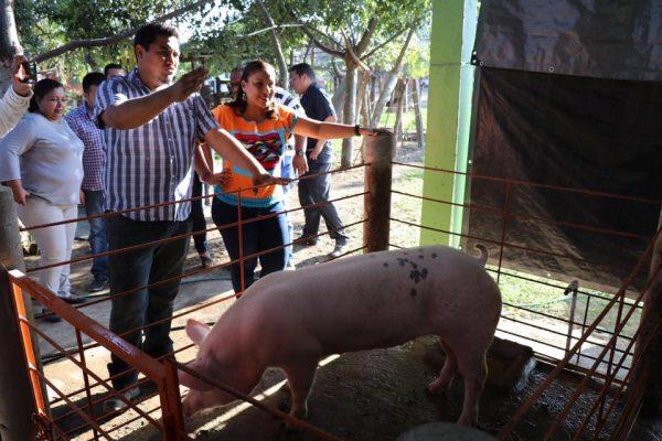 Urge difusión del nuevo padrón único de beneficiarios de  Sagarpa: Karina Barón