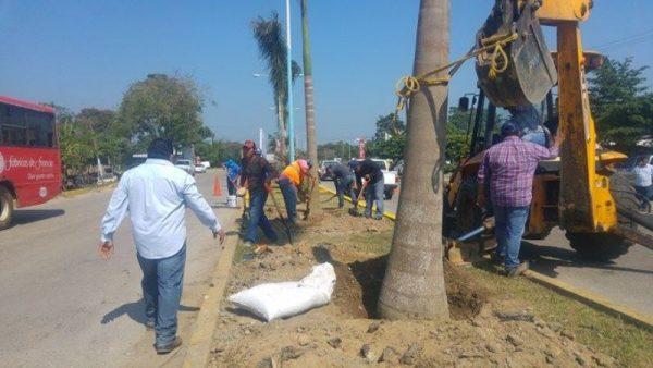 Inicia el cambio de imagen en Tuxtepec, con programa de Embellecimiento