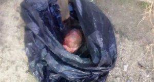 Tiran feto de seis meses en camino de terracería