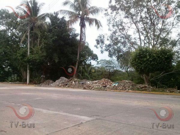 Tuxtepecanos buscan decretar área de reserva Ecológica al Muro Boulevard