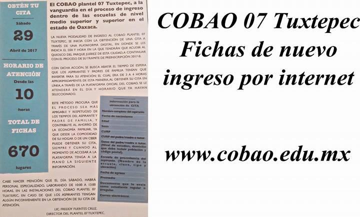 COBAO 07 entregará fichas este sábado a través de internet