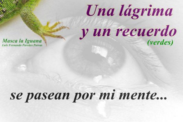 Masca la Iguana/Una lágrima y un recuerdo… verdes