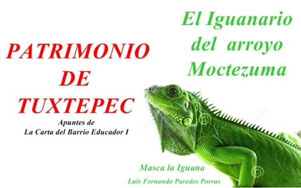 Dávila: cercano a la gente…¿y a las iguanas?