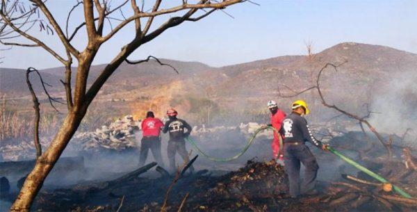 Dejan incendios forestales 4 muertos y 4 heridos en Oaxaca
