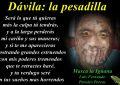 Masca La Iguana / El insomnio y sus causas