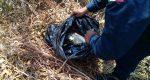 Efectivos de la policía estatal localizan cuatro kilos de marihuana en Zaachila