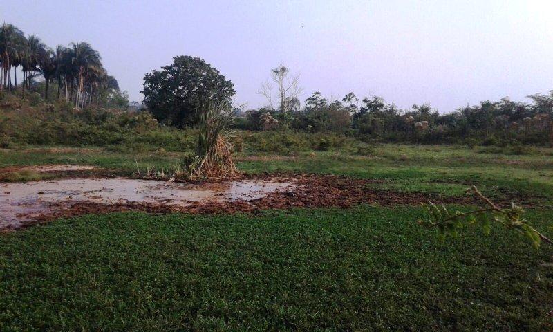 Hallan restos humanos en pantano de Tuxtepec