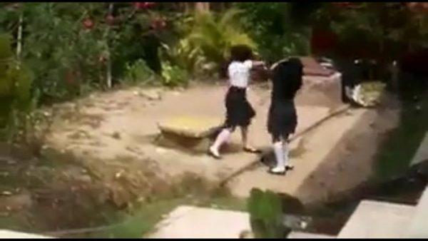 Viral: pelean dos estudiantes del Cobao y autoridad no interviene +Video