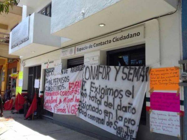 En SEMARNAT habitantes de San Juan Mixtepec exigen alto a la tala de árboles