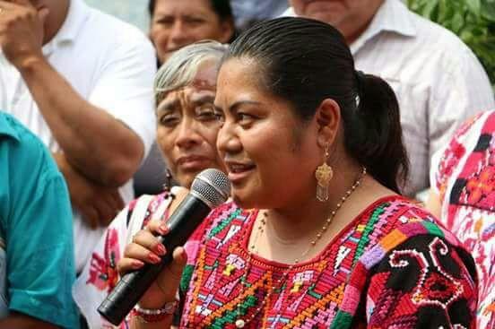 Con resultados responderé ante críticas asegura la diputada Felicitas Hernández