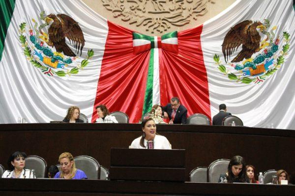 Respalda Congreso de la Unión a chinantecos sin indemnizar por Presa Cerro de Oro: Karina Barón