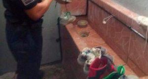 Hallan más droga en reclusorios, ahora fue en Juchitán de Zaragoza
