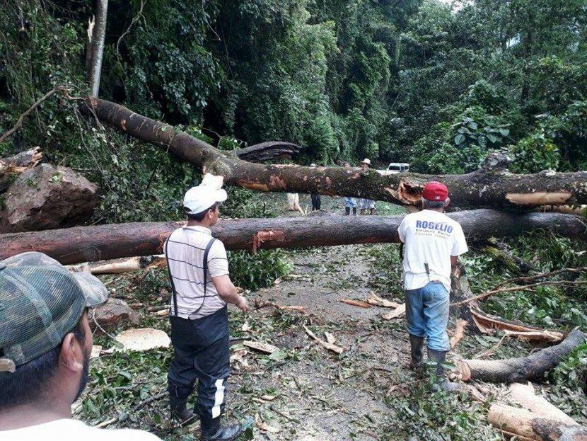 Deslave del cerro en San Martín bloquea la carretera en Jacatepec