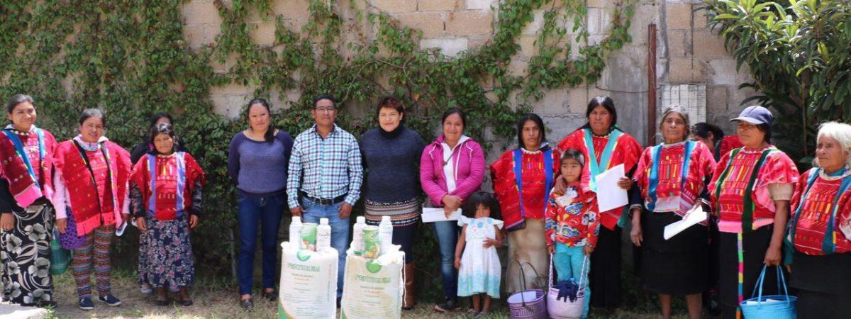 Ante adversas circunstancias, diputada Neli Espinosa apoya a campesinos de la región Mixteca y Valles Centrales
