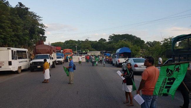 En la carretera federal 200 Pinotepa-Acapulco API retiene unidades de empresas transnacionales