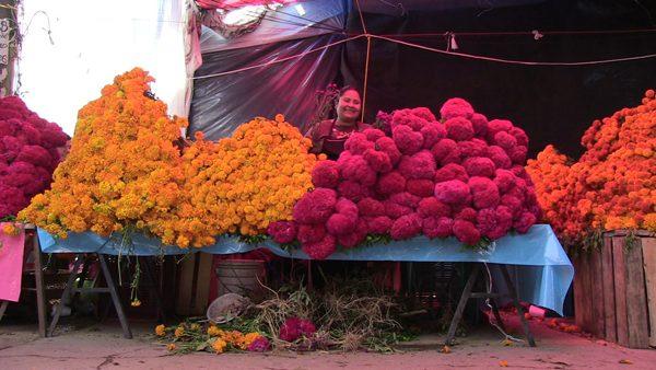 Por sismos, caen las ventas de flores para altares de muertos en Oaxaca