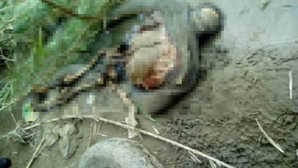 Aparece cadáver putrefacto en orillas del Atoyac en Oaxaca