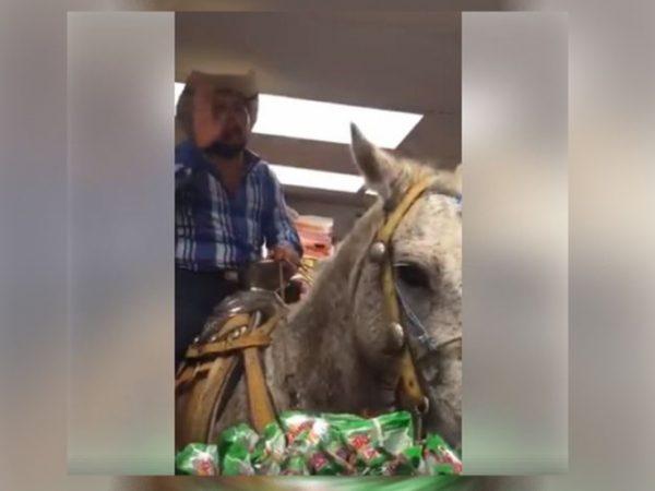 Se mete con todo y caballo a comprar cervezas a OXXO