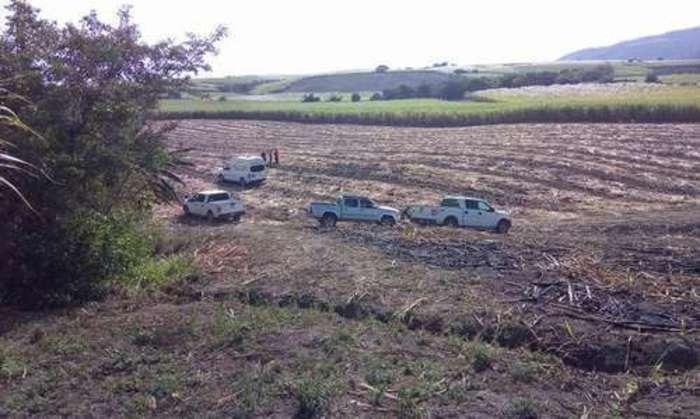 Hallan 23 cuerpos en fosas ilegales de Nayarit