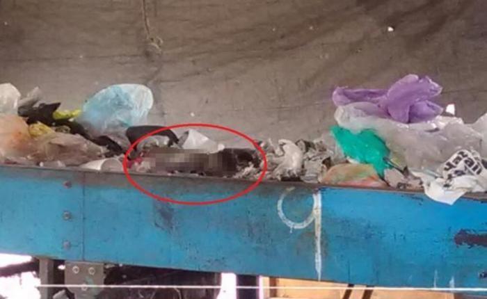 Hallan cadáver de una bebé en basurero de Oaxaca