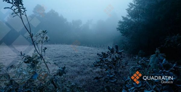 Alerta CEPCO por frente frío en Oaxaca