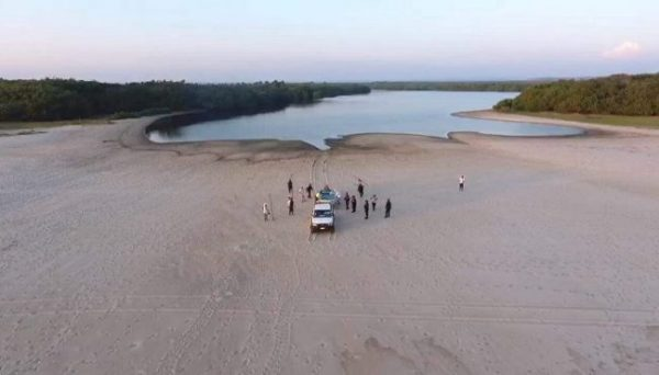 Después de tres días de búsqueda avistan manada de 30 a 40 cocodrilos en Pinotepa