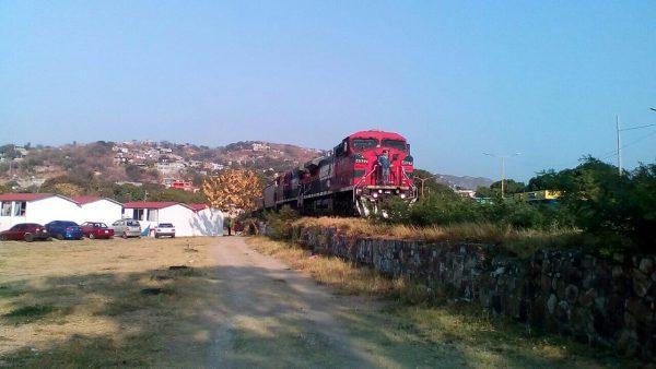 Regresa el Tren Carguero a Salina Cruz; repartirá 11 mil toneladas de trigo