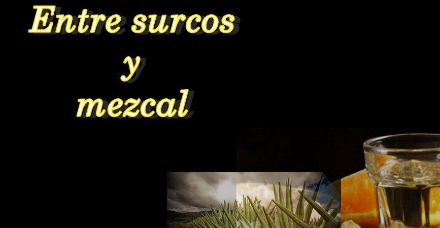 Entre surcos y Mezcal/ Gris monocromático