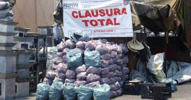Asegura la Profepa más de tres toneladas de carbón vegetal y leña de encino y pino en Oaxaca