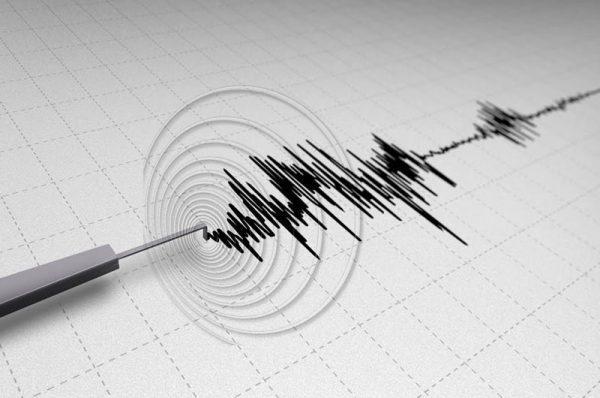 """Registran """"ola"""" de 50 sismos en 6 estados"""