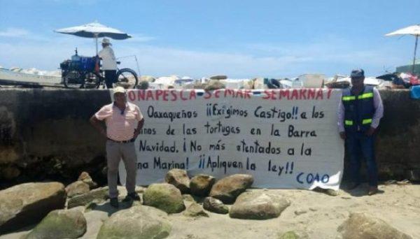Protestan ambientalistas por muerte de tortugas en costa de Oaxaca