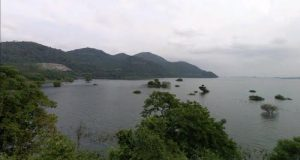 Muere joven ahogado en Ojitlán