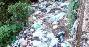 Se deslinda Comité Ciudadano por basurero que apareció en Valle Nacional