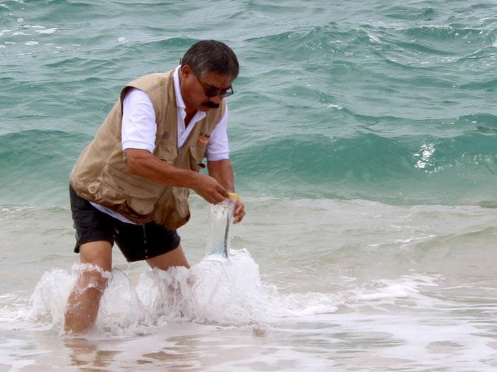 En Puerto Ángel, Huatulco y Puerto Escondido,  playas limpias y sustentables: SSO