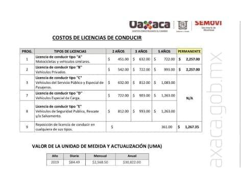Empezarán A Expedir Licencias Permanentes En Tuxtepec Tvbus Tv