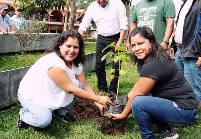 siembre chiltepec (3)